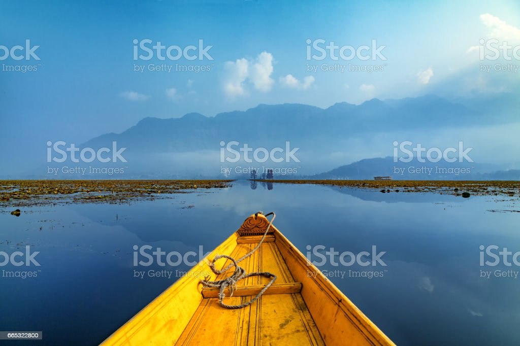 Chaar Chenar Bagh(Park) in the middle of Dal lake in Srinagar stock photo