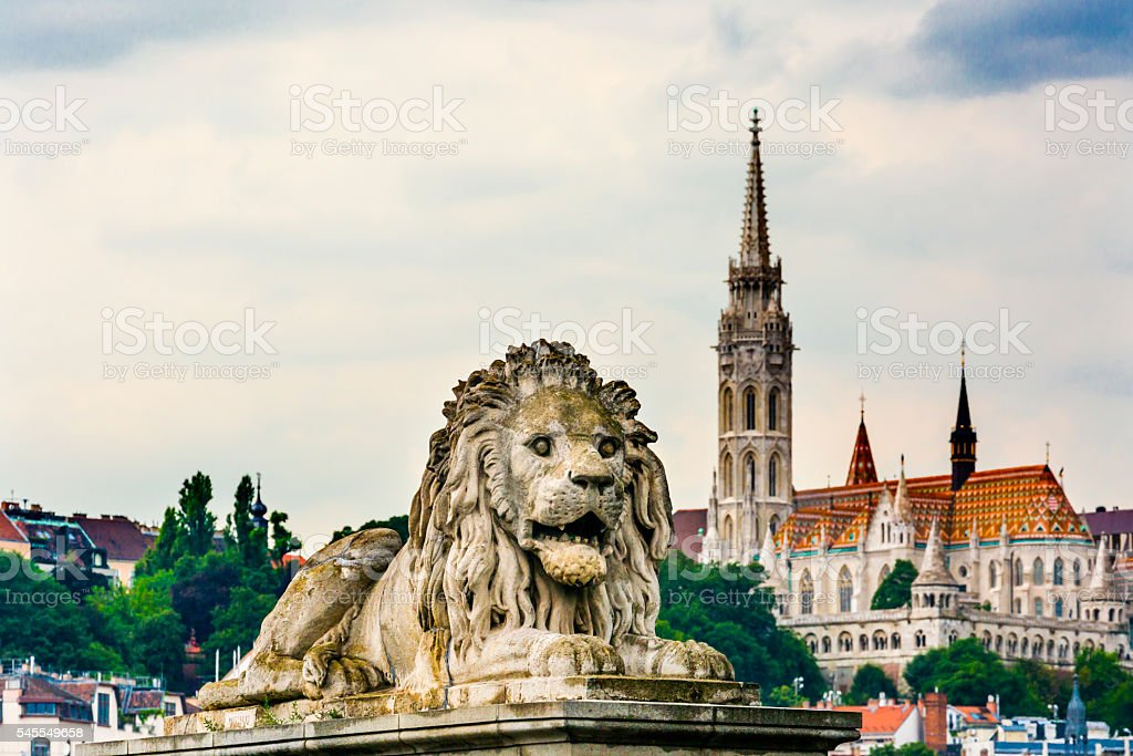 Chain Bridge Lion Matthias Church Budapest Hungary stock photo
