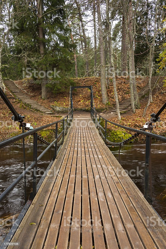Chain bridge over river in forest royalty-free stock photo