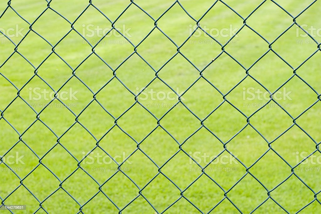 Chain link fence and grass royalty-free stock photo