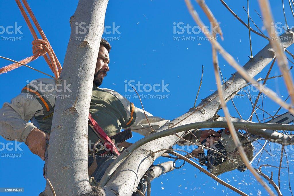 Chain Saw Man royalty-free stock photo
