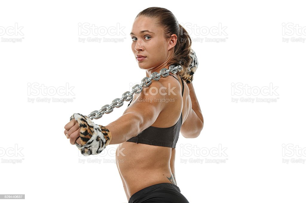 Chained Tiger stock photo