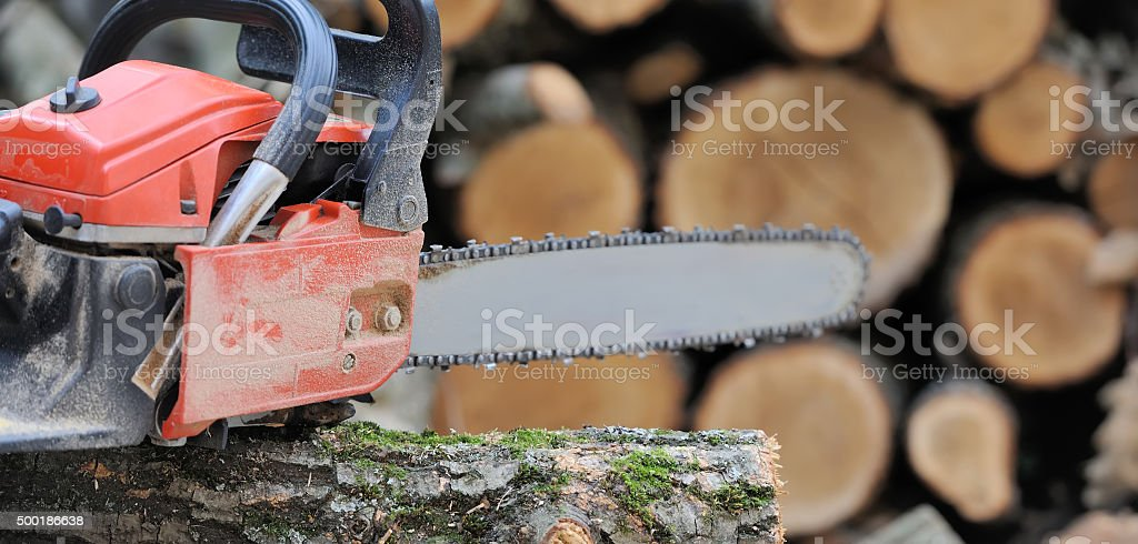 Chainsaw and tree stock photo