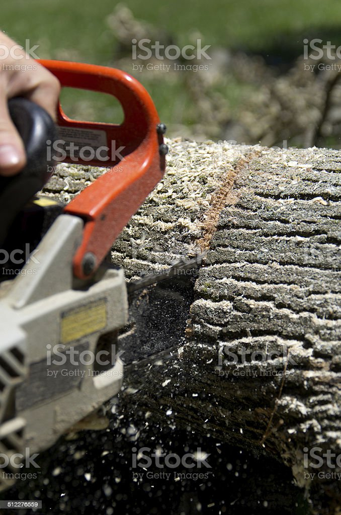 Chainsaw in Action stock photo