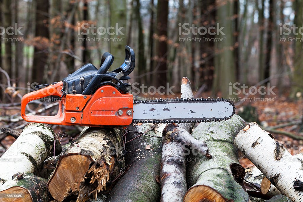 Chainsaw in the forest on a woodpile stock photo