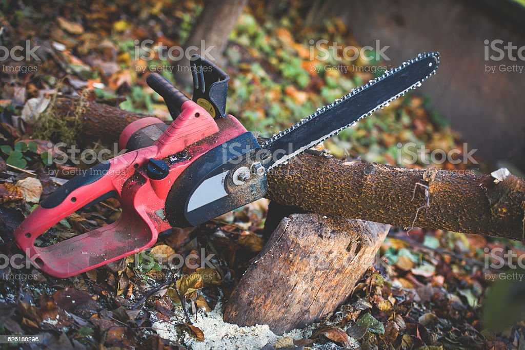 chainsaw in the garden on the block stock photo