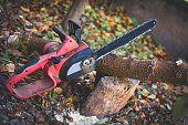 chainsaw in the garden on the block