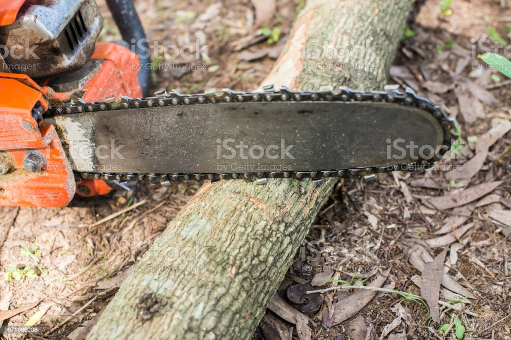 chainsaw tool stock photo