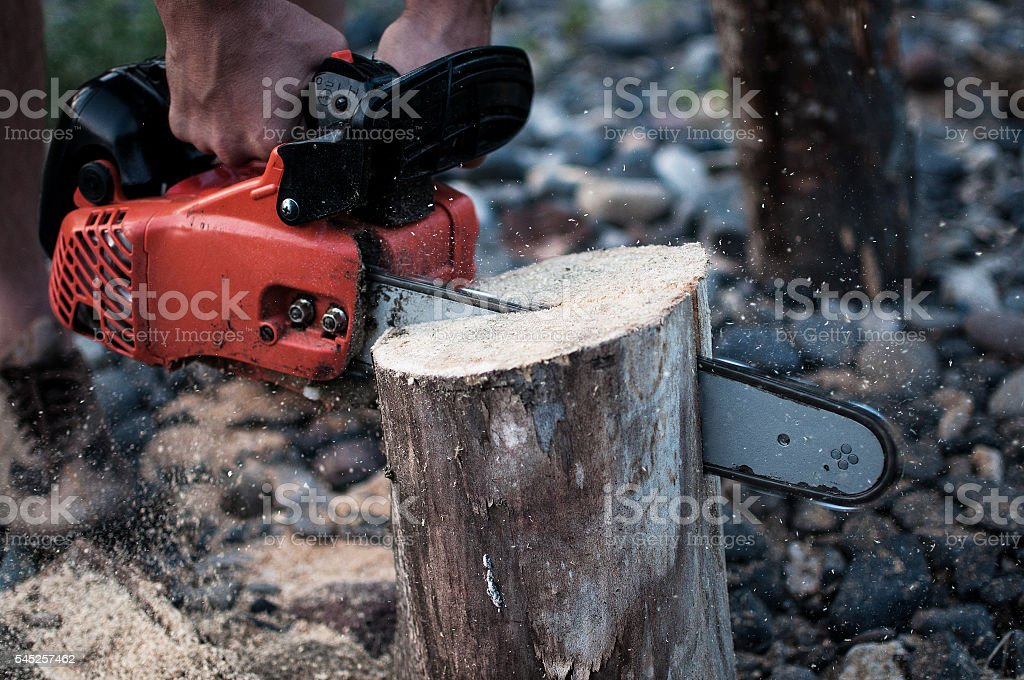 Chainsaw work stock photo