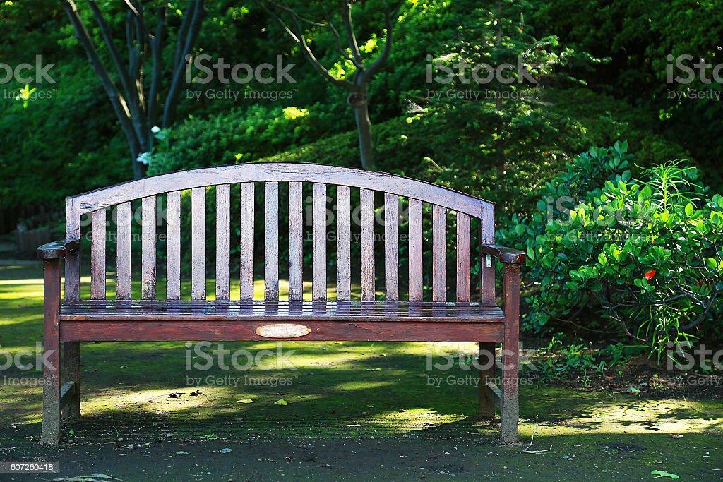 Chair among the green foto de stock libre de derechos
