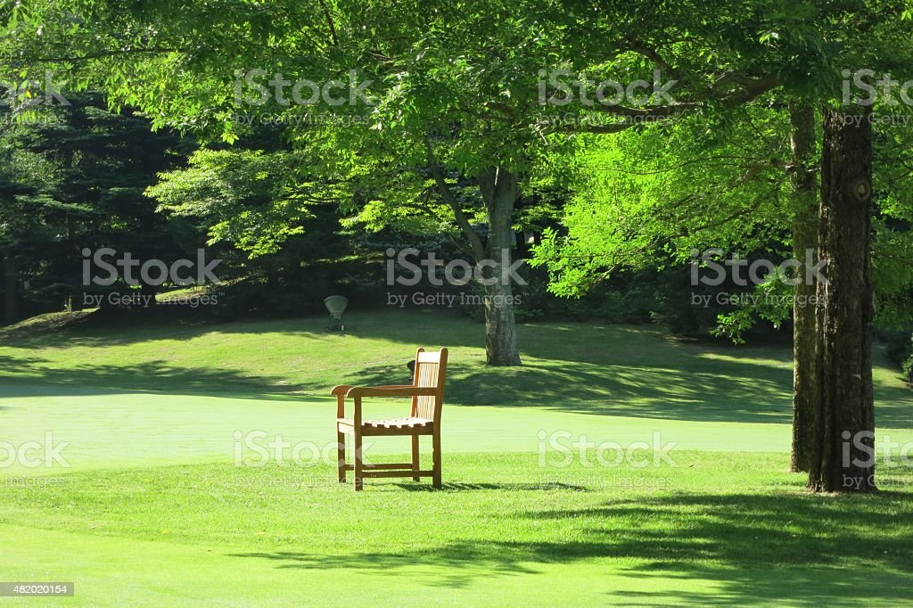 chair under the tree royalty-free stock photo