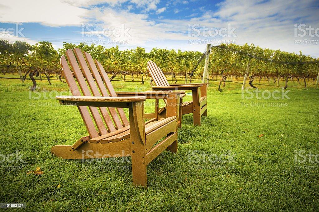Chairs in Vineyard stock photo