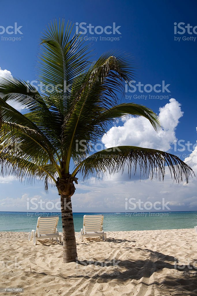 Chairs on a Caribbean Beach royalty-free stock photo