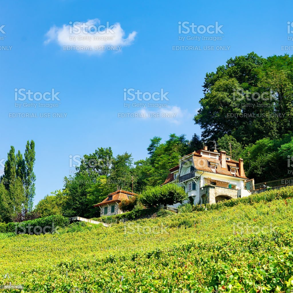 Chalet in Lavaux Vineyard Terraces hiking trail in Swiss stock photo