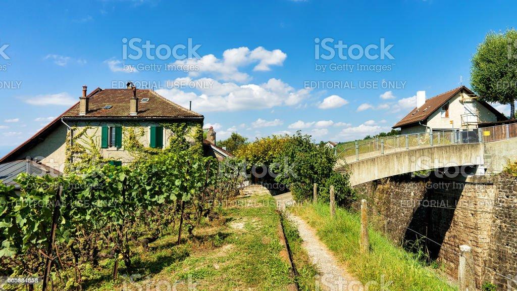 Chalets in Lavaux Vineyard Terraces hiking trail Lavaux Oron stock photo