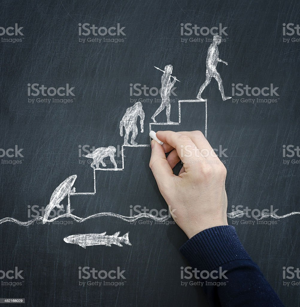 Chalk drawing of back to evolution concept stock photo
