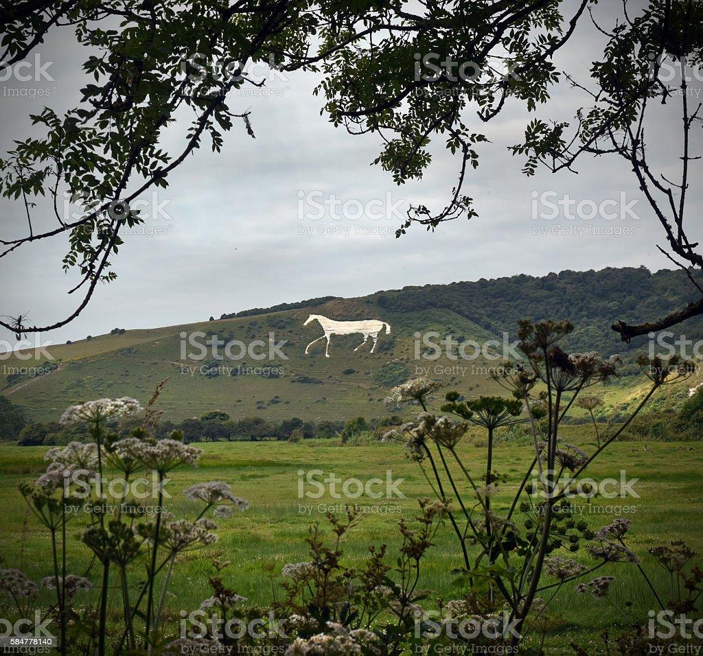 Chalk Horse stock photo
