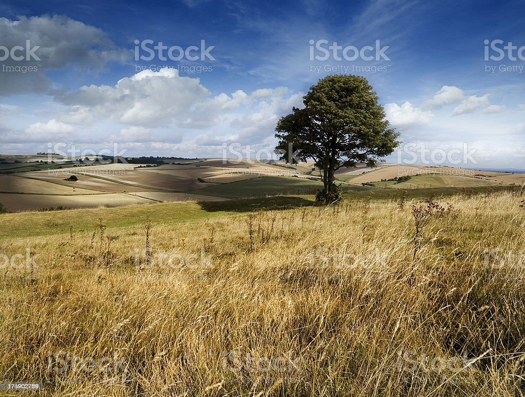 Chalk Landscape royalty-free stock photo