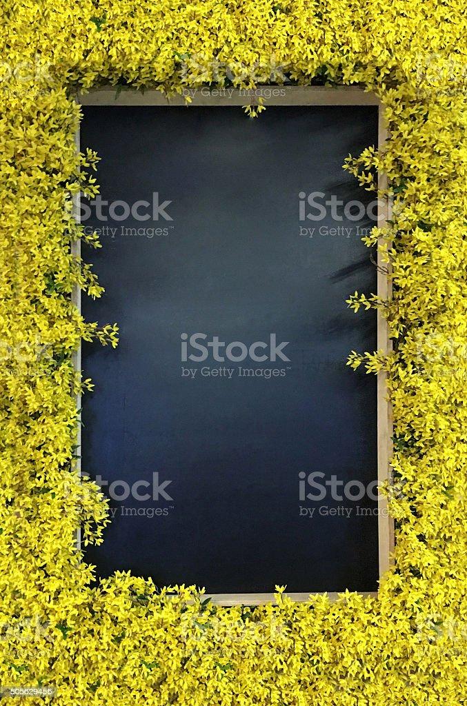 Chalkboard blackboard stock photo