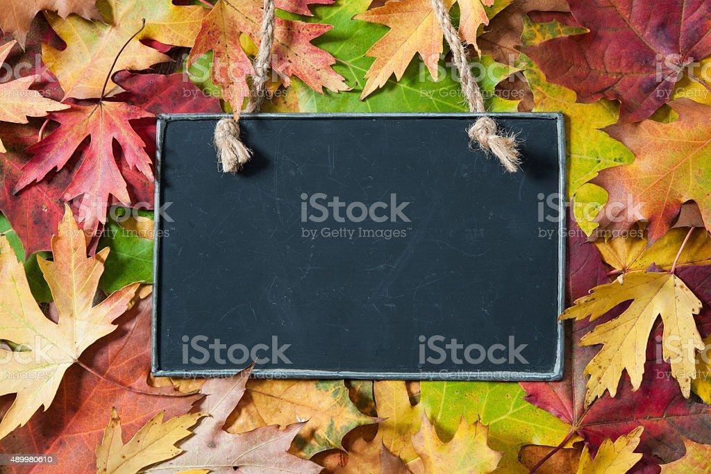 Chalkboard  on autumnal leaves stock photo