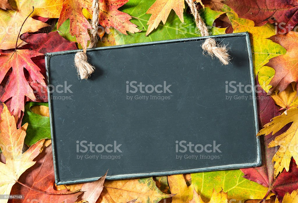 Chalkboard  on autumnal leaves stock photo