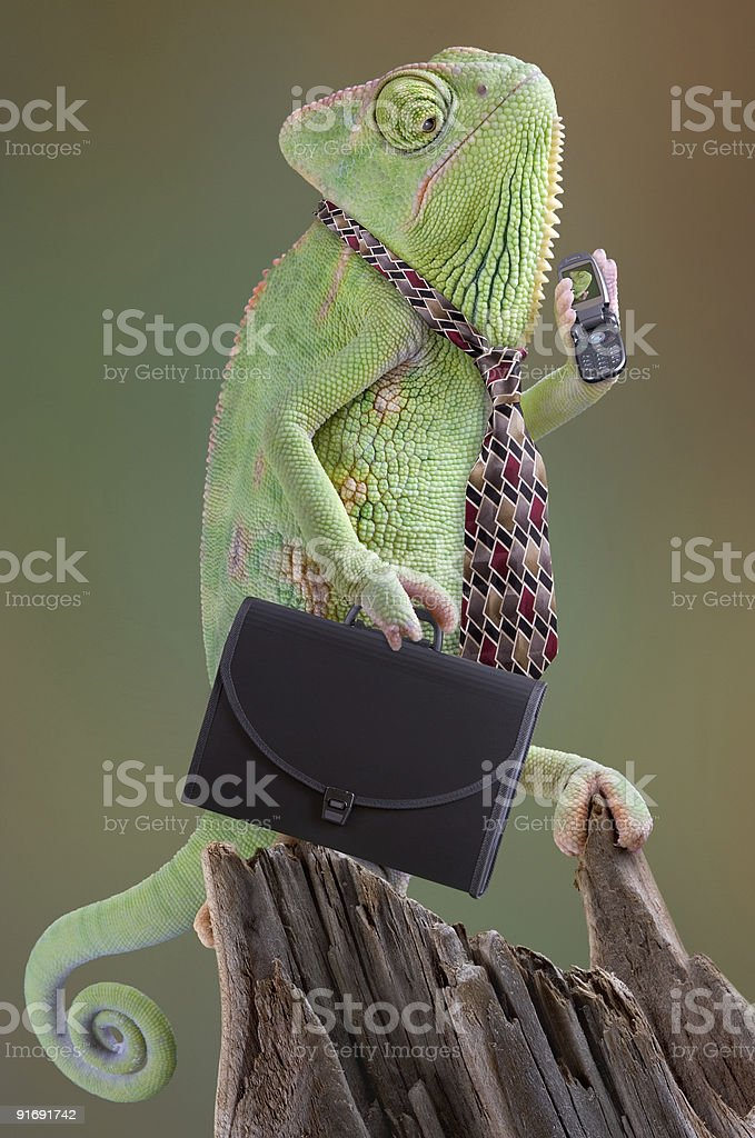 Chameleon Businessman with briefcase and cell phone stock photo