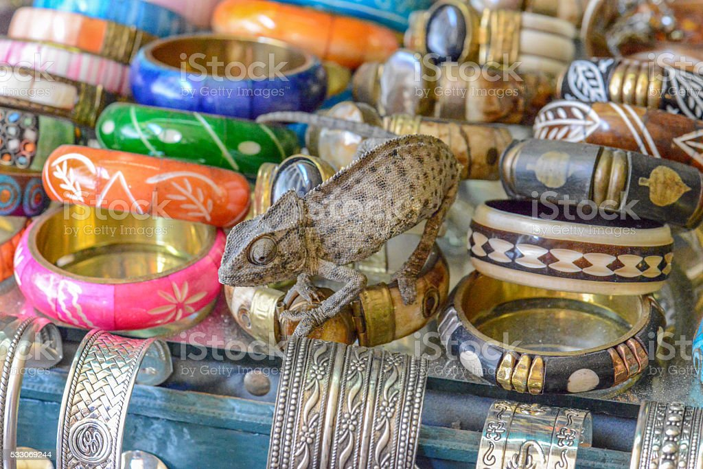 chameleon sitting on  jewelry on the streets of tuni stock photo