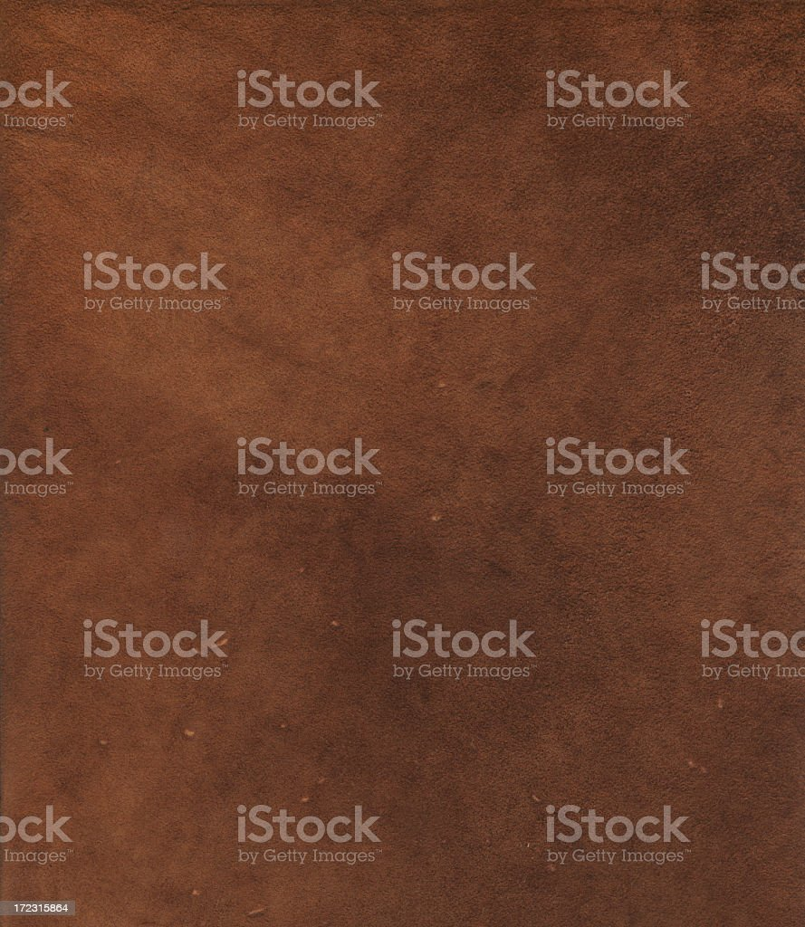 XXL Chamois Leather Detail stock photo