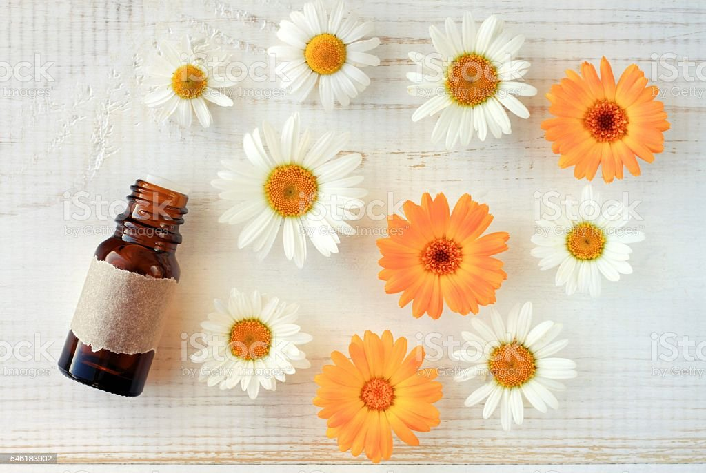Chamomile and marigold herbal oil stock photo