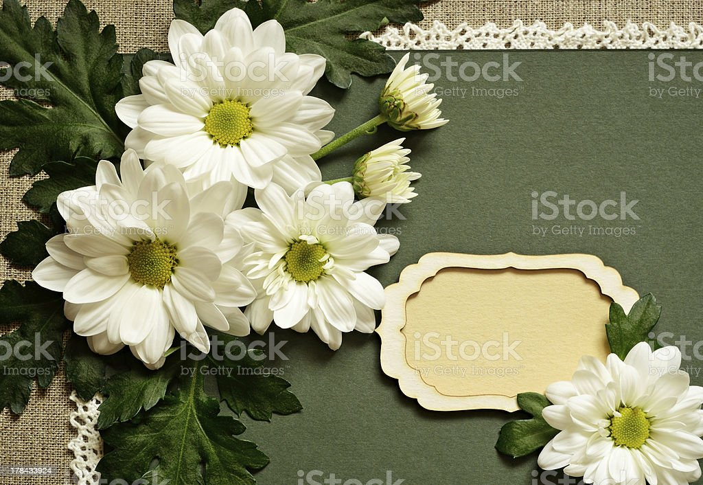 Chamomile arrangement and a card royalty-free stock photo