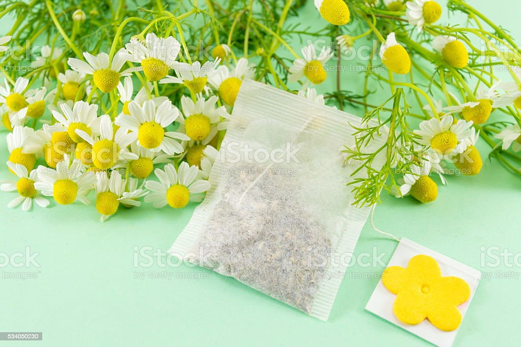 Chamomile flowers and a chamomile tea bag stock photo