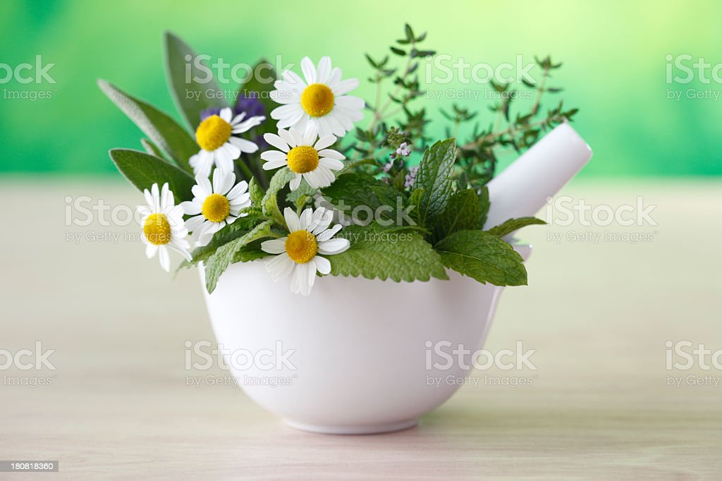 Chamomile flowers and herbs in a white mortar and pestle stock photo