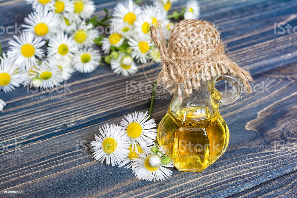 Chamomile flowers oil stock photo