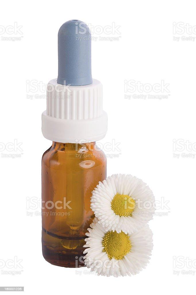 chamomile herbal liquid royalty-free stock photo