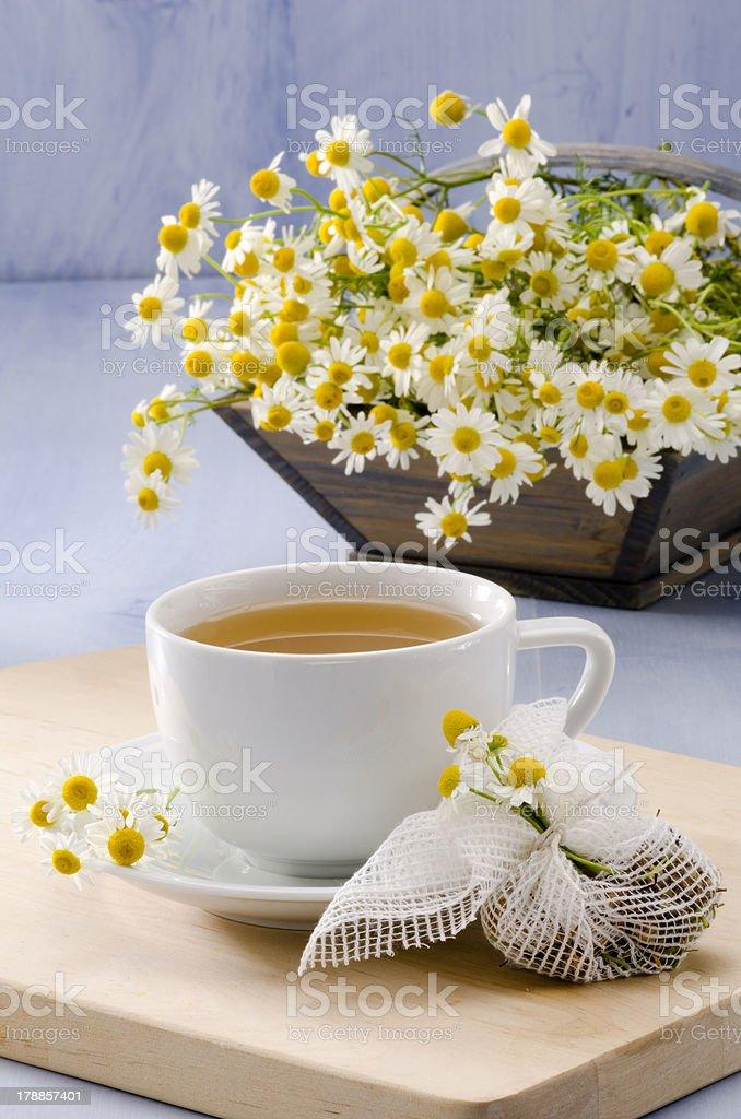 Chamomile Herbal Tea stock photo