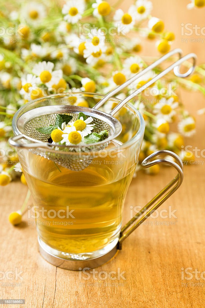 Chamomile tea infusion stock photo