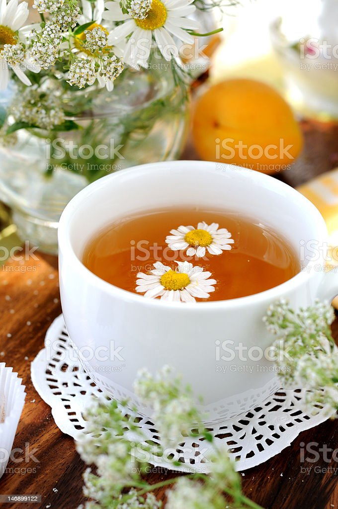 Chamomile tea royalty-free stock photo