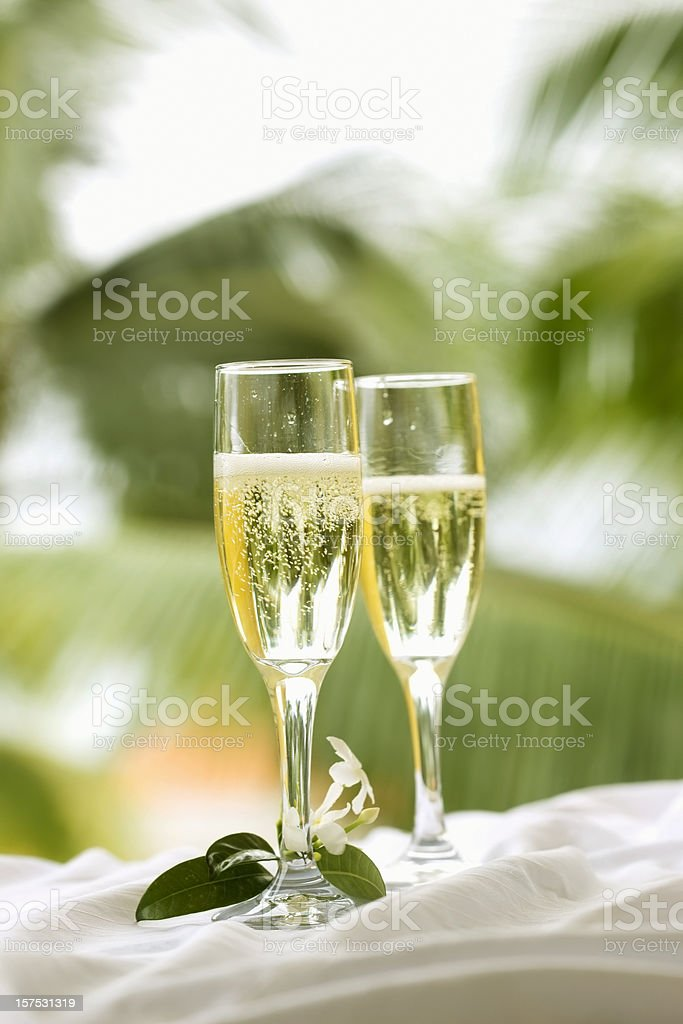 Champagne on the Patio royalty-free stock photo