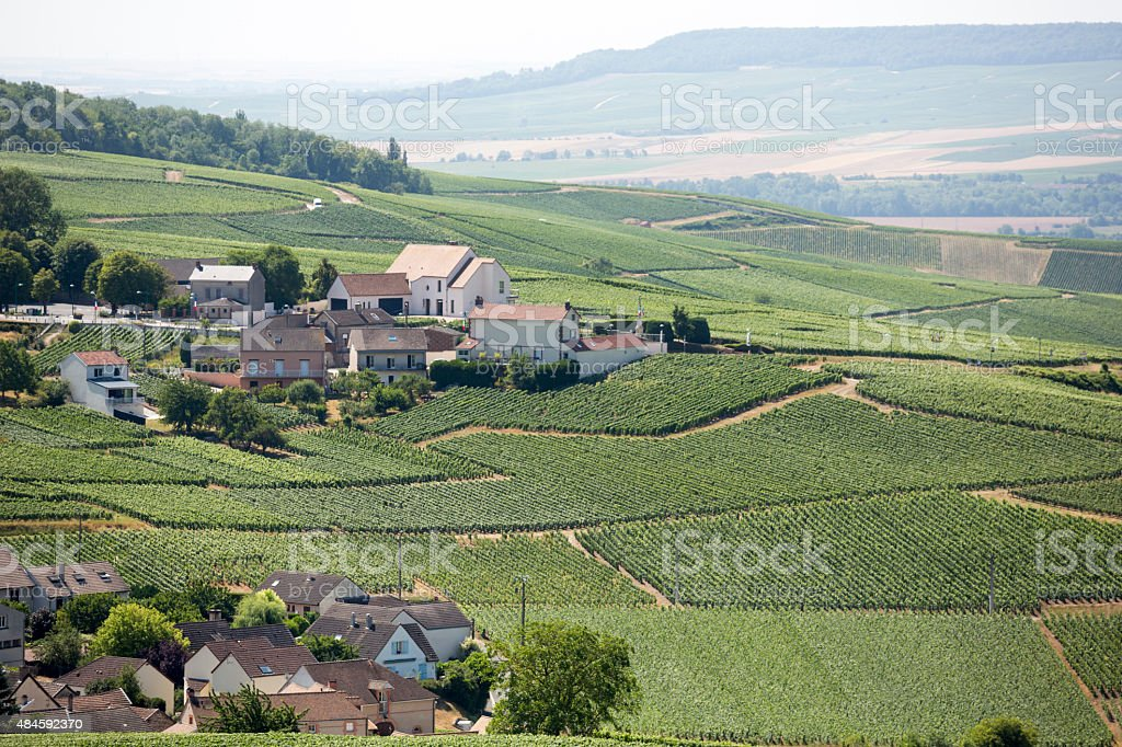 Champagne Region of Epernay France, Summer in Europe Wine Country stock photo