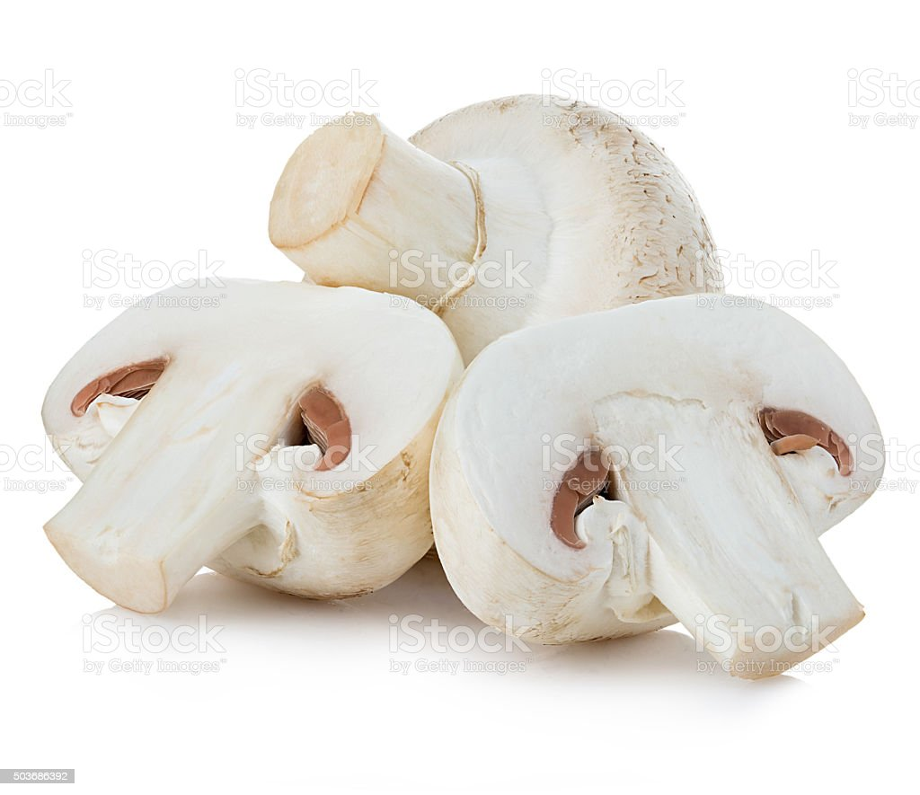 Champignon mushrooms close-up isolated on a white background. stock photo