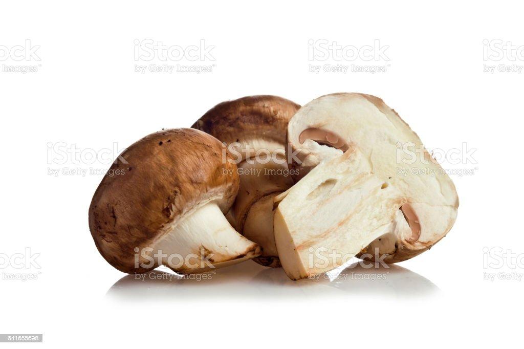 champignons on a white background stock photo