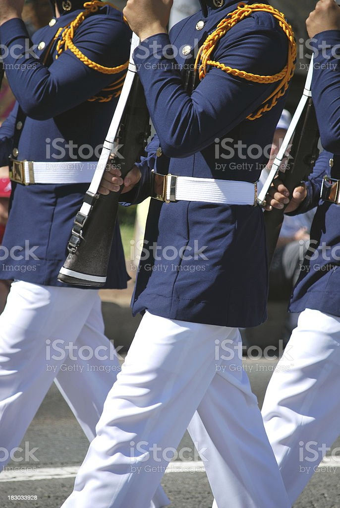 Change of Guard Ceremony royalty-free stock photo