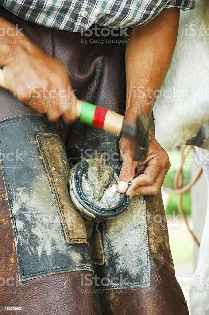 Changing  horseshoe stock photo
