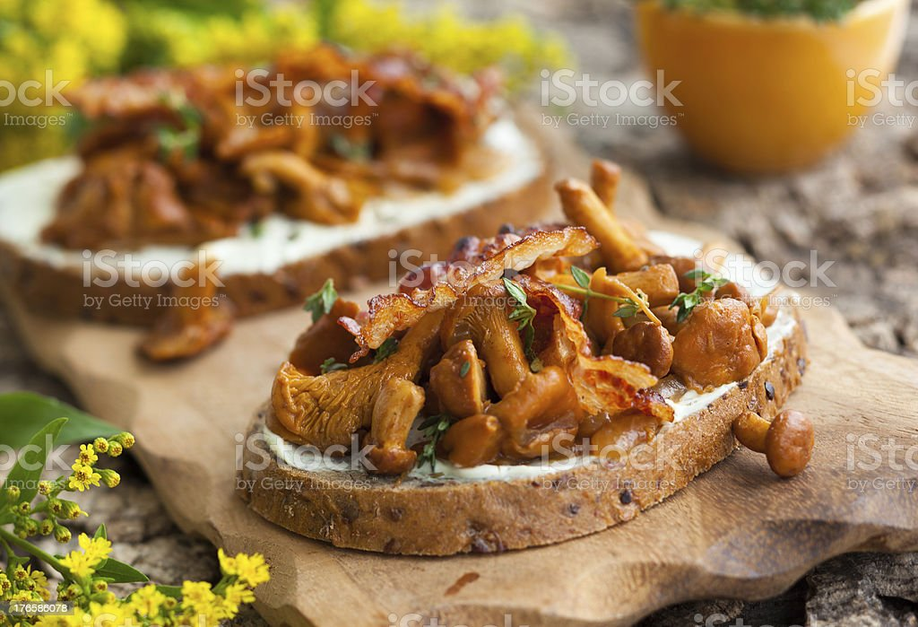 Chanterelle Sandwiches royalty-free stock photo