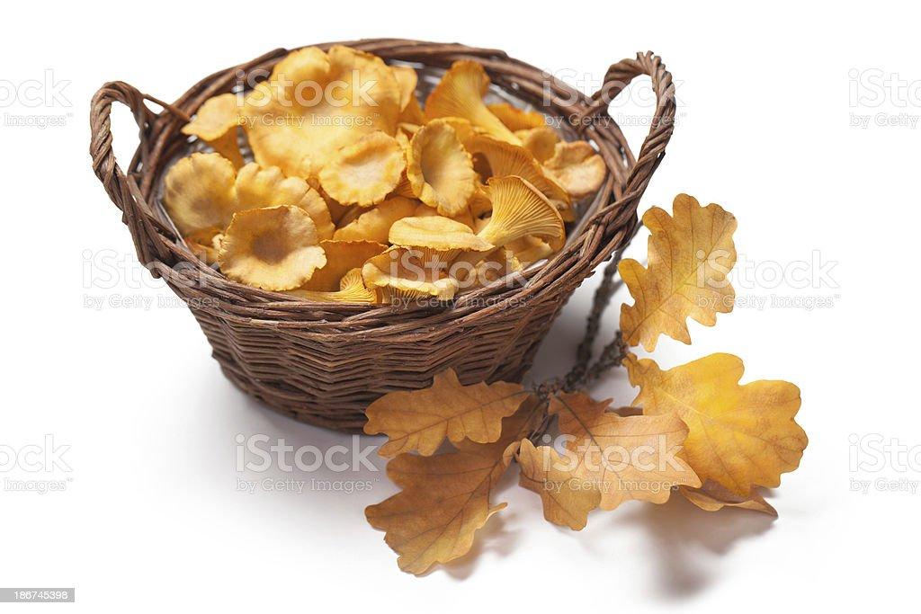 Chanterelles in a basket stock photo