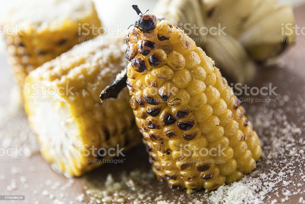 Char grilled Corn on the Cob royalty-free stock photo