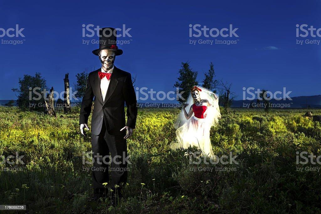 Characters: Skeleton bride beckons her groom.  Spooky Halloween wedding. stock photo