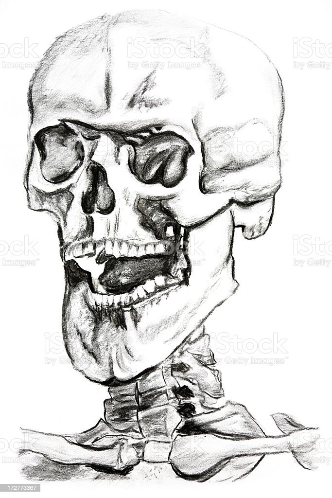 Charcoal Drawing of a Skull stock photo