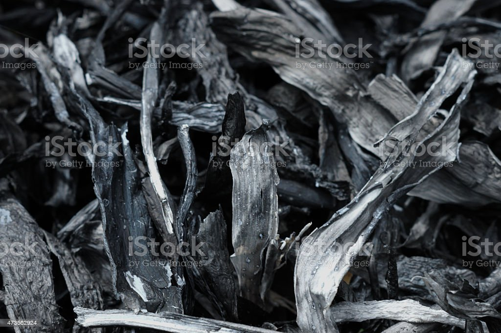Charcoal from bamboo leaves, To make Chinese ink. stock photo