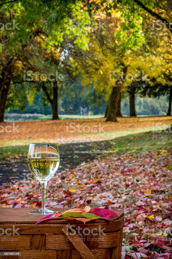 Chardonnay Wine Glass Inverting Brilliant Fall Foliage Picnic Basket Park stock photo